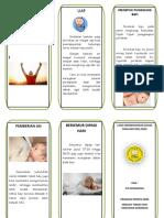Leaflet-Inhalasi-Sederhana.doc