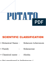 potato.ppt
