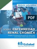 Manual de enfermedad renal Essalud 2019