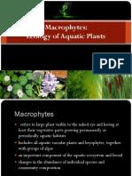 Macrophytes.pptx