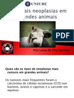 Principais Neoplasias Em Grandes Animais