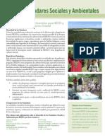 REDD + estándares sociales y ambientales