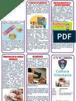 331058953-Triptico-Cultura-Tributaria.pdf
