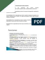 Características de Los Músculos Del Cuerpo Humano-2019