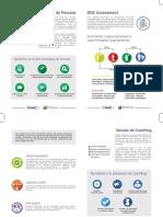 DISC assessment - IMC - INSTITUTO MENTOR COACH.pdf
