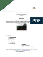 1 INFORME TECNICO_22.docx