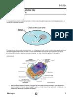 Biologia -Citoplasma e Organelas Não Produtoras de ATP-7f47d158ad79fe8ee58ce29013e1045c
