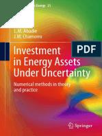 Abadie13-InvestmentEnergyAssetsUncertainty