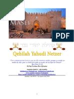 Parashat Masei #43 Adul 6019