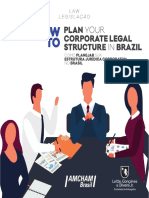 How to Plan Your Corporate Legal Structure in Brazil