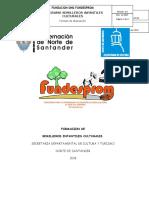 plan de trabajo fundesprom