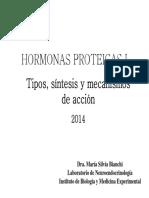 Clase Hormonas Proteicas -Tipos-sintesis y Mecanismos de Accion