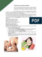Cuidados de La Lactancia Materna