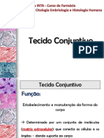 09 Tecido Conjuntivo_Modificado