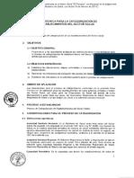 Guia Tecnica de Categorizacion Rm-076-2014-Minsa