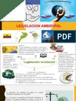 seguridad ambiental