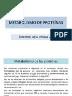Metabolismo Proteínas-est (1)