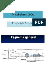 Metabolismo CHO 19 I Est