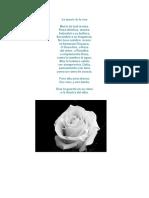 La Muerte de La Rosa
