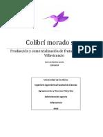 Colibri Morado s.a.s