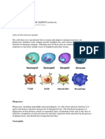 Cellules de l'Immunité