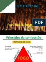 Aula 1_Princípios Da Combustão