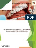 Exposición-fisiología.pptx