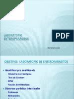 Resumen Pre Analitico Lab Enteroparasitos 2019