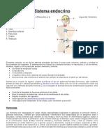 Sistema-Endocrino Taller 2019