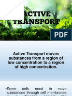 7 - Active-bulk Transport