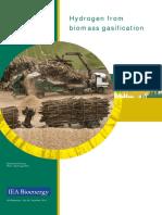 Wasserstoffstudie_IEA final (1).pdf