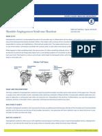 The Portland Clinic Shoulder Impingement 0