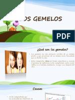 LOS GEMELOS.pptx