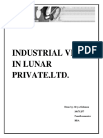 Industrial Visit in Lunar Private (Sivya)