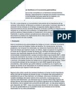 Trabajo Informal, Impacto de Las Remesas Familiares en La Economía Guatemalteca