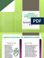 ACTIVIDAD 2 BLACK BOAR
