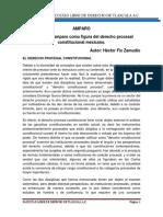 AMPARO (1).docx