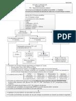 Pneumologie - Epanchement Pleural Unilateral 05052017