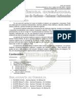 11 Cadenas Cabonadas - Teorico