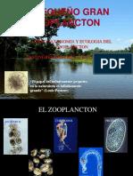 Introducción Zooplancton-Rotifera