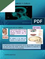 Semiologia Cabeza y Cuello....