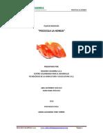 PLAN DE NEGOCIOS PROYECTO PISCÍCOLA LA HONDA.pdf