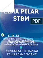 273348621-5-Pilar-Stbm.ppt
