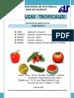 Libro Hortalizas Tropicales Cultivos I.pdf