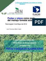 Podas-y-Raleos-Como-Parte-Del-Manejo-Forestal.pdf