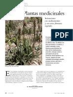 Plantas medicinales interacciones