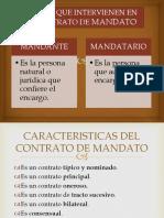 sujetos y caracteristicas.pptx