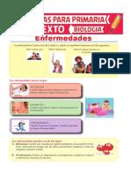 Enfermedades-para-Sexto-de-Primaria.pdf