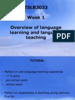 Teacher Awareness