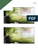 IFPEC-Les-fondamentaux-de-la-psychologie-énergétique-Feinstein